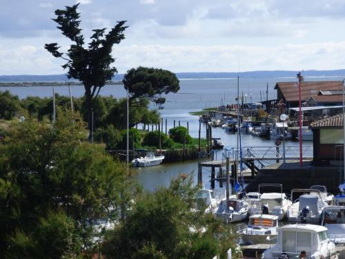 Les Marinas de Cassy : Apartment near Lanton