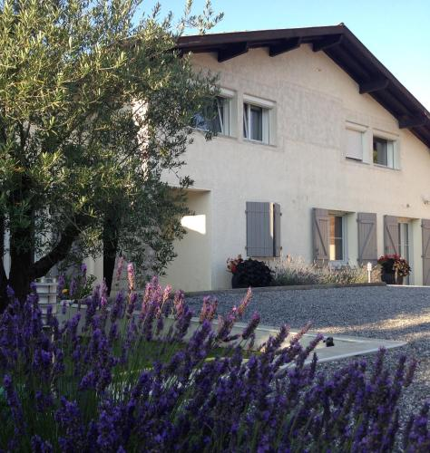 Aux Sources d'Hossegor : Bed and Breakfast near Soorts-Hossegor