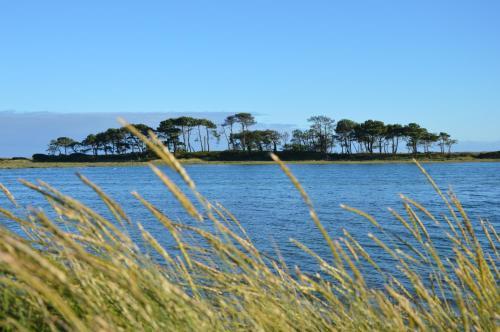Gîte de l'Ile aux Pins : Guest accommodation near Locmiquélic