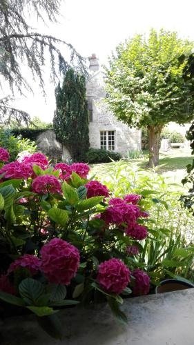 Relais De La Haute Pommeraye : Bed and Breakfast near Brenouille
