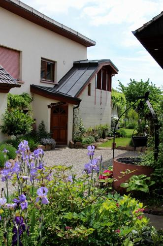 Les 3 Ceps : Guest accommodation near Raedersheim
