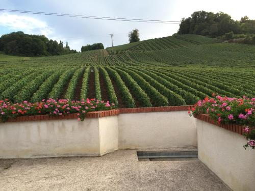 La Loge Du Vigneron : Guest accommodation near Cuisles