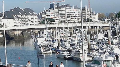 Vue Sur Le Port : Apartment near Le Pouliguen