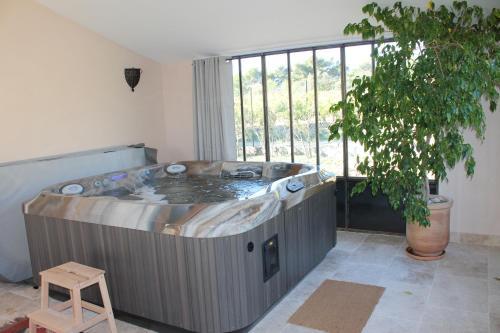 Lapauline FR5BZEVA : Guest accommodation near Saint-Martin-de-la-Brasque