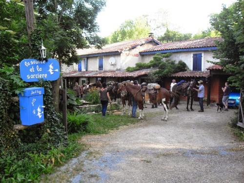 La Source et la Sorciere Gîte et Chambre d'Hôtes : Guest accommodation near Roquefère