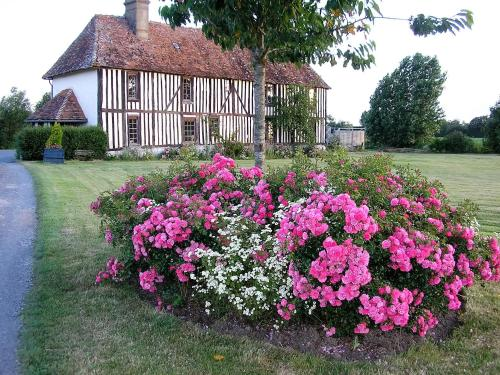 Le Manoir d'Annique : Bed and Breakfast near Fresnay-le-Samson