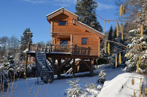 Cabane L'Orée des Bornes : Guest accommodation near Aviernoz