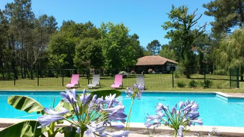 La Maison Lotte : Guest accommodation near Laluque