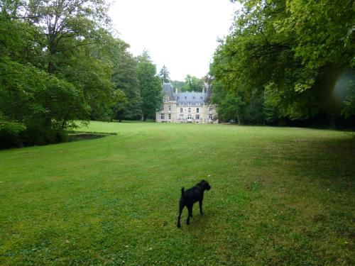 Chateau de la Raffe : Guest accommodation near Paroy-sur-Saulx
