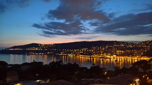 Stunning flat overlooking Villefranche Bay : Apartment near Beaulieu-sur-Mer