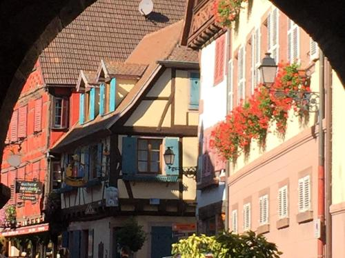 Elsass Design : Apartment near Thannenkirch