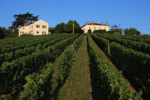 Domaine du Fontenay : Bed and Breakfast near Saint-Sixte