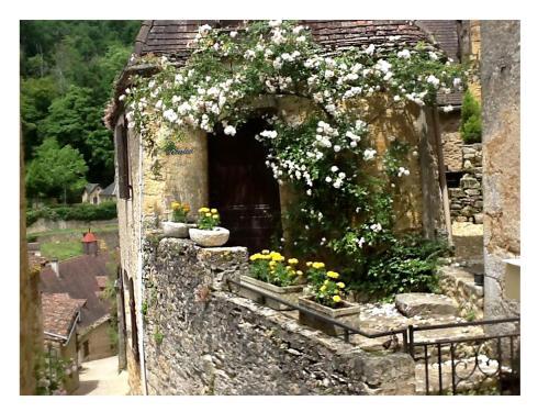 Maison de caractère : Guest accommodation near Beynac-et-Cazenac