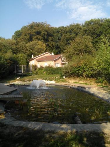 Le Jardin Ombragé : Bed and Breakfast near Bizonnes