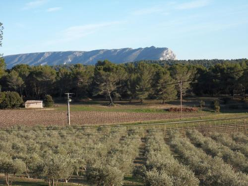 Domaine Olibaou : Bed and Breakfast near Meyrargues