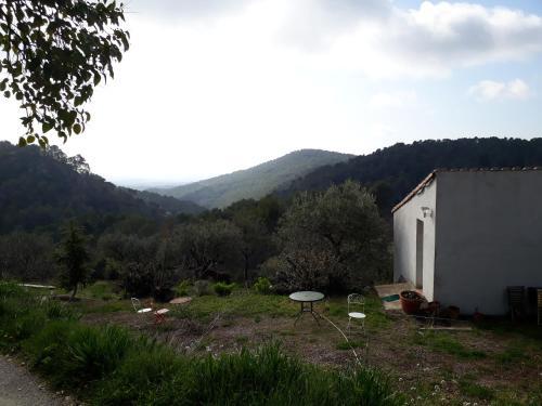 Maison de Campagne l'étang : Apartment near Seillans