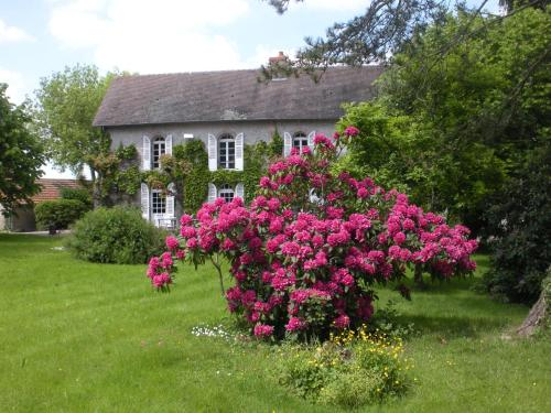 Le Domaine du Mijarnier : Bed and Breakfast near Saint-Pourçain-sur-Besbre