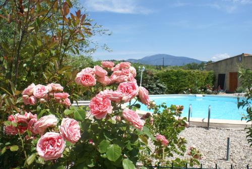 Les Romarins : Bed and Breakfast near Crestet