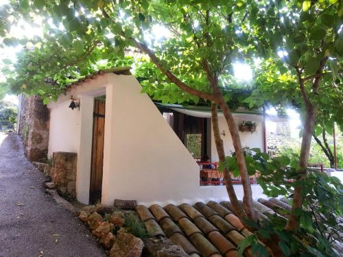 Julien : Guest accommodation near Aizac
