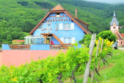 Guest House Domaine Bohn : Guest accommodation near Triembach-au-Val