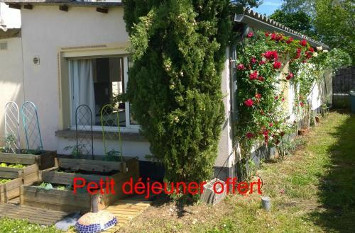 studio mercues : Bed and Breakfast near Cahors