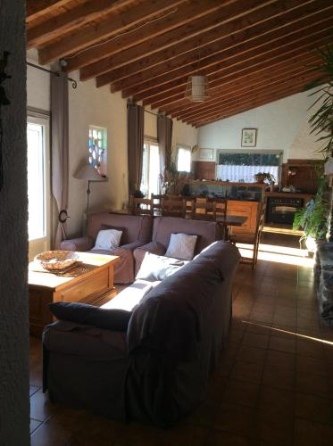 Maison dans corbieres : Guest accommodation near Davejean