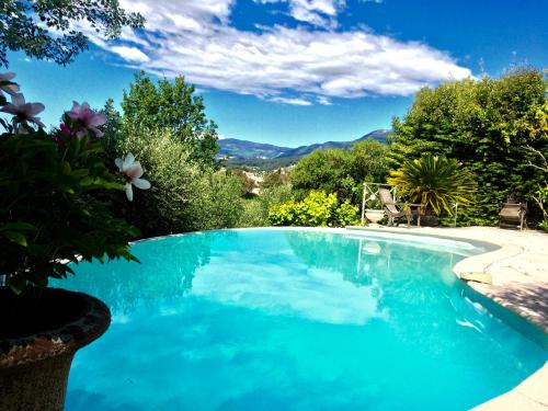 Mimosa : Guest accommodation near Villeneuve-Loubet