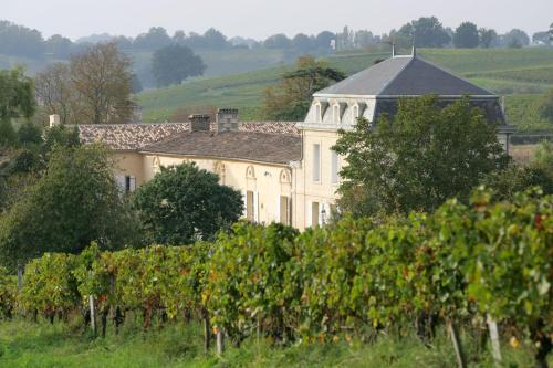Château Richelieu : Bed and Breakfast near Saint-Michel-de-Fronsac