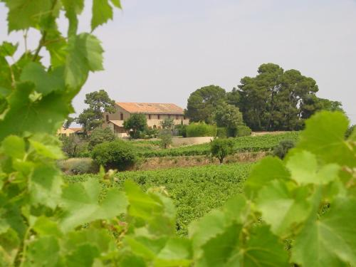 Le Ramonet et Le Grenier : Guest accommodation near Gabian