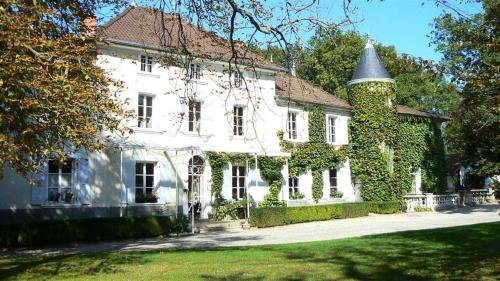 Chateau des Ayes - Chambre d'hotes : Guest accommodation near Bossieu