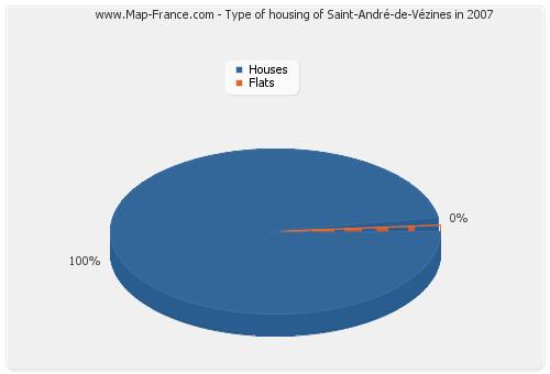 Type of housing of Saint-André-de-Vézines in 2007