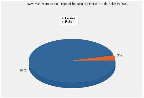 Type of housing of Montastruc-de-Salies in 2007