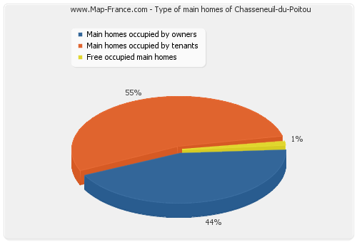 Type of main homes of Chasseneuil-du-Poitou