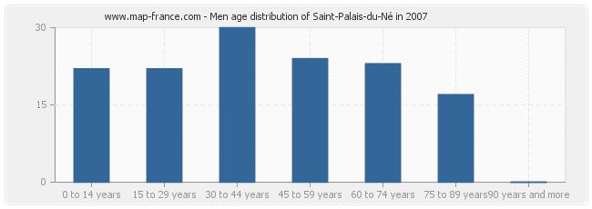 Men age distribution of Saint-Palais-du-Né in 2007