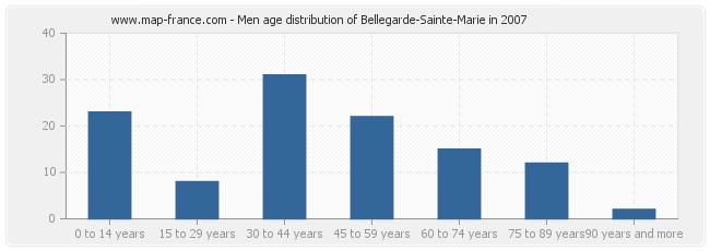 Men age distribution of Bellegarde-Sainte-Marie in 2007