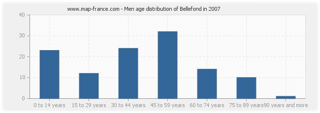 Men age distribution of Bellefond in 2007