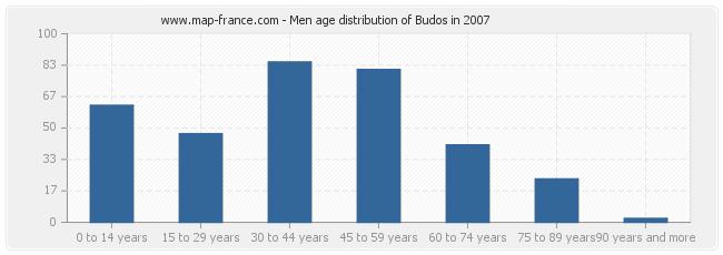 Men age distribution of Budos in 2007
