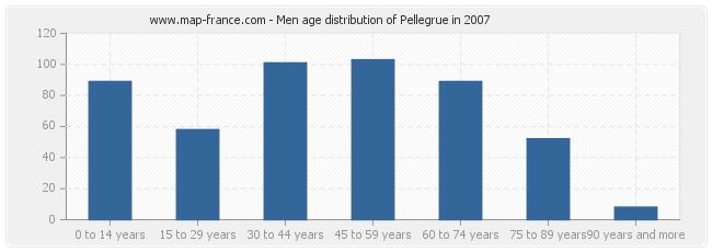 Men age distribution of Pellegrue in 2007