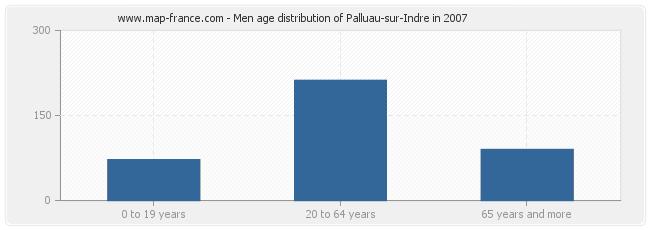 Men age distribution of Palluau-sur-Indre in 2007