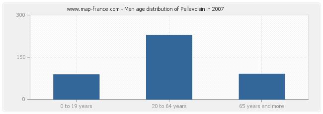 Men age distribution of Pellevoisin in 2007