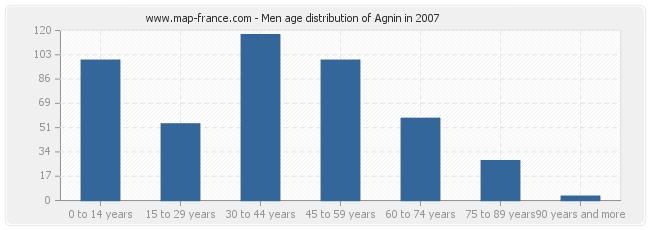 Men age distribution of Agnin in 2007