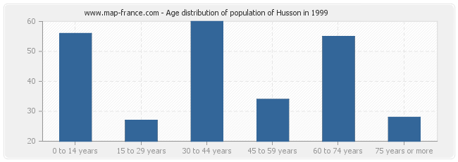 Age distribution of population of Husson in 1999