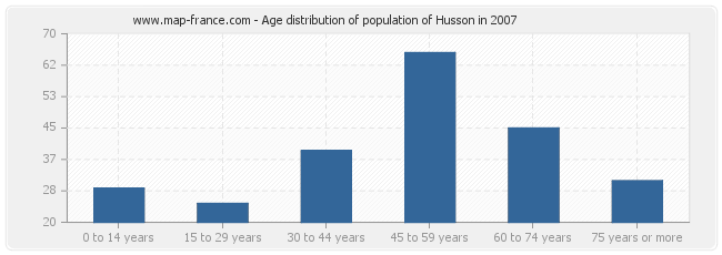 Age distribution of population of Husson in 2007