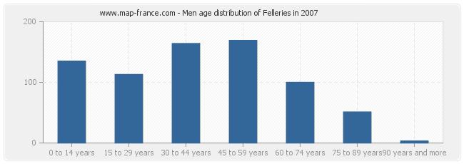 Men age distribution of Felleries in 2007