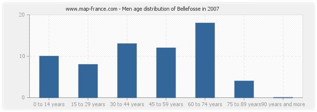 Men age distribution of Bellefosse in 2007