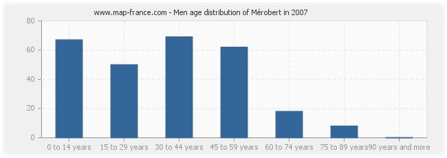 Men age distribution of Mérobert in 2007
